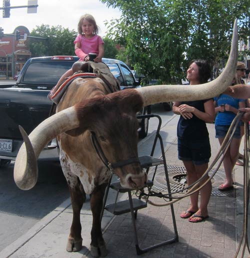 Little Girl Rides Longhorn Steer outside F.M. Light