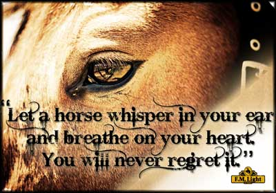 "Poster from F.M. Light and Sons: ""Let a horse whisper in your ear and breathe on your heart. You will never regret it."""